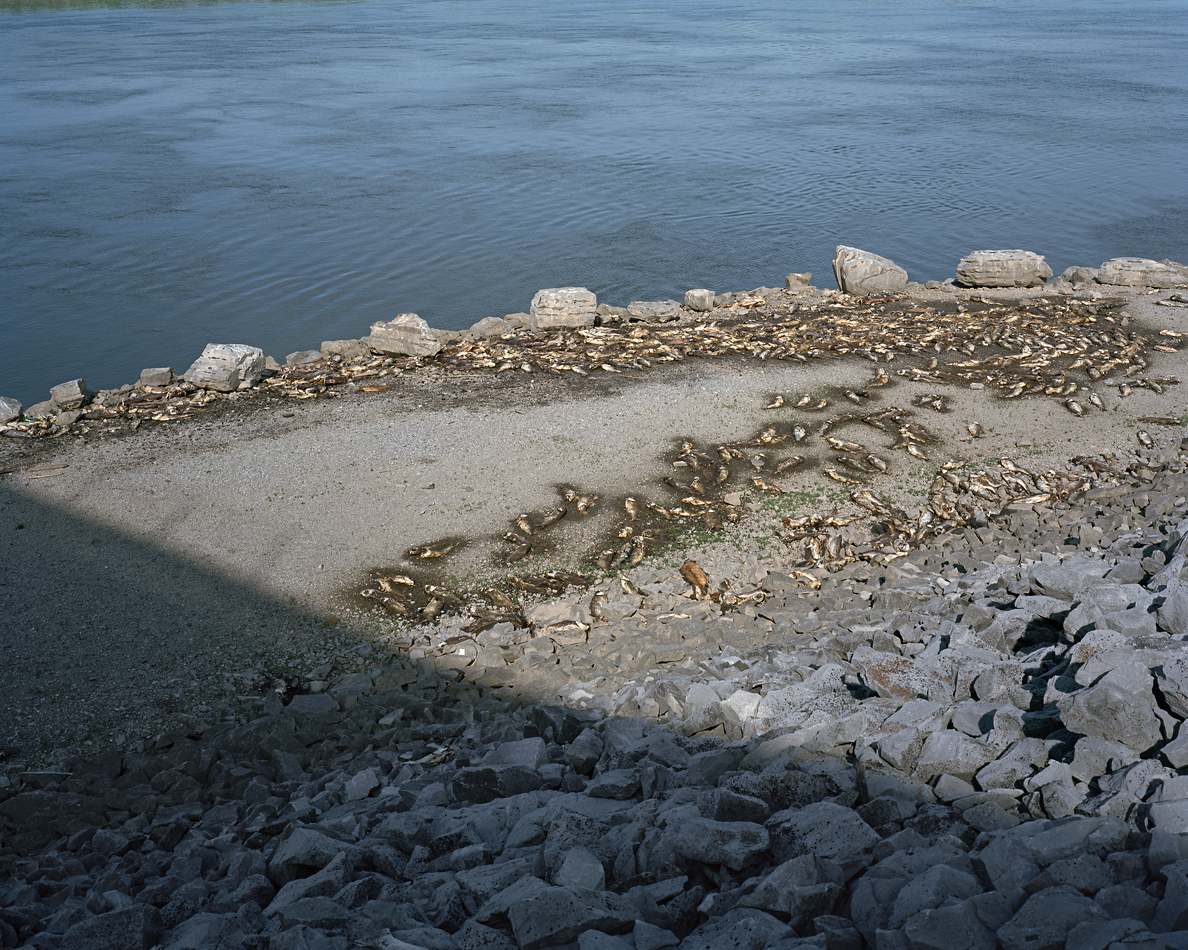 ... of water from kentucky dam tennessee river grand rivers kentucky 2014